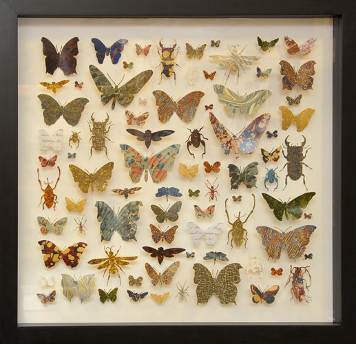 Paper Entomology - Helen Ward
